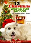 12 Christmas Wishes For My Dog (Region 1 DVD)