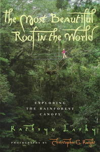 The Most Beautiful Roof in the World - Kathryn Lasky (Paperback) - Cover