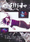 Collide - Collide:Like the Hunted (Region 1 DVD)