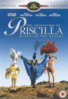 Adventures of Priscilla - Queen of the Desert (DVD)