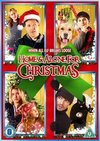 Home and Alone for Christmas (DVD)