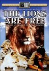 Lions Are Free (DVD)