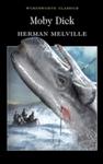 Moby Dick - Herman Melville (Paperback)