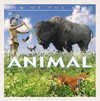 Ten of the Best Animal Myths - David West (Library)
