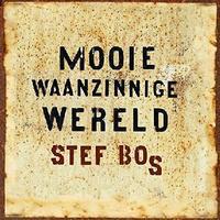 Stef Bos - Mooie Waanzinnige Wereld (CD) - Cover