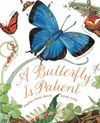 A Butterfly Is Patient - Dianna Aston (Paperback)