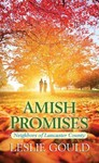 Amish Promises - Leslie Gould (Library)