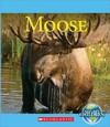 Moose - Josh Gregory (Library)