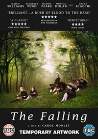 Falling (DVD) - Cover