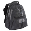 Targus Sports 16 inch Notebook Backpack - Black