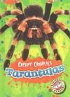 Tarantulas - Kari Schuetz (Library) Cover