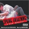 Spring Awakening: a New Musical / O.C.R. (CD)
