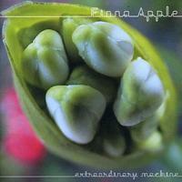 Fiona Apple - Extraordinary Machine (CD)
