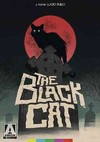 Black Cat (Region 1 DVD)