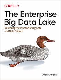 Enterprise Big Data Lake - Alex Gorelik (Paperback) - Cover