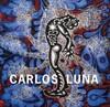 Carlos Luna - Barbaro Martinez-Ruiz (Hardcover)