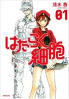 Cells at Work! 2 - Akane Shimizu (Paperback)