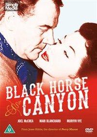 Black Horse Canyon (DVD) - Cover