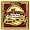 Ernie Ball 2012 Earthwood Medium 80/20 Bronze 12 String Acoustic Guitar Strings