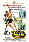 Tarzan the Ape Man (Region 1 DVD)