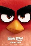 Angry Birds Movie (Region 1 DVD)