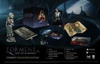 Torment: Tides of Numenera (PS4) - Cover