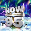 Various Artists - Now That's What I Call Music! 95 (CD)