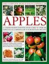 The Complete World Encyclopedia of Apples - Andrew Mikolajski (Hardcover)