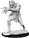 Dungeons & Dragons - Nolzur's Marvelous Unpainted Minis: Troll