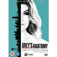 Grey's Anatomy: Complete Thirteenth Season (DVD)
