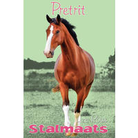 Stalmaats 19: Pretrit - Lize Roux (Paperback)