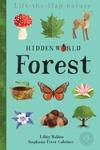 Hidden World: Forest - Libby Walden (Novelty book)