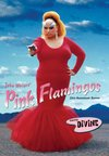 Pink Flamingos (Region 1 DVD)