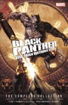 Black Panther - David Liss (Paperback) Cover