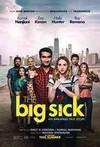 Big Sick (Region 1 DVD)