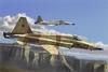 Hobbyboss 1:72 - F-5e Tiger II fighter - Re-edition (Plastic Model Kit)