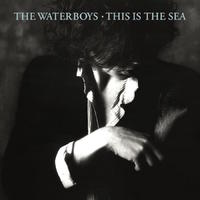 Waterboys - This Is the Sea (CD) - Cover