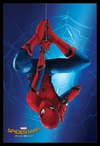 Spider-Man Homecoming - Hanging (Framed Poster) Cover