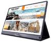 ASUS - 15.6 inch Full HD IPS Gloss Computer Monitor - Grey