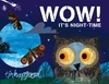 Wow! It's Night-Time - Tim Hopgood (Board book)