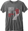 Green Day - American Idiot Vintage Men Charcoal Burnout T-Shirt (Medium)