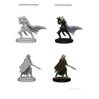 Pathfinder - Deep Cuts Unpainted Miniatures - Elf Male Paladin - Cover