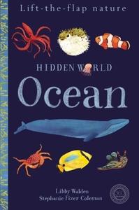Hidden World: Ocean - Libby Walden (Novelty book) - Cover