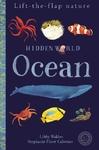 Hidden World: Ocean - Libby Walden (Novelty book)