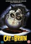 Cat in the Brain (DVD)