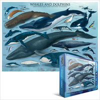 Eurographics Puzzle 1000 Pieces - Whales & Dolphins - Cover