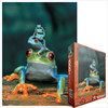 Eurographics - Red-Eyed Tree Frog Puzzle (1000 Pieces) Cover