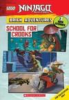 School for Crooks - Meredith Rusu (Paperback)