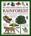 My First Encylopedia of the Rainforest - Richard Mcginlay (Paperback)