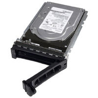 Dell 8TB 7.2K RPM NLSAS 12Gbps 512e 3.5 inch Internal Hot-Plug Hard Drive